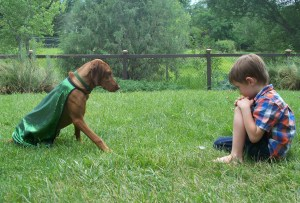 Dornfeld_puppy rescue