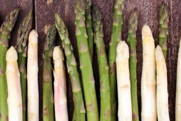 asperge : tout savoir sur ce légume printanier