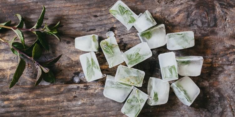 glaçons menthe - herbes aromatiques