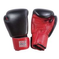 PowerForce Boxing Gloves