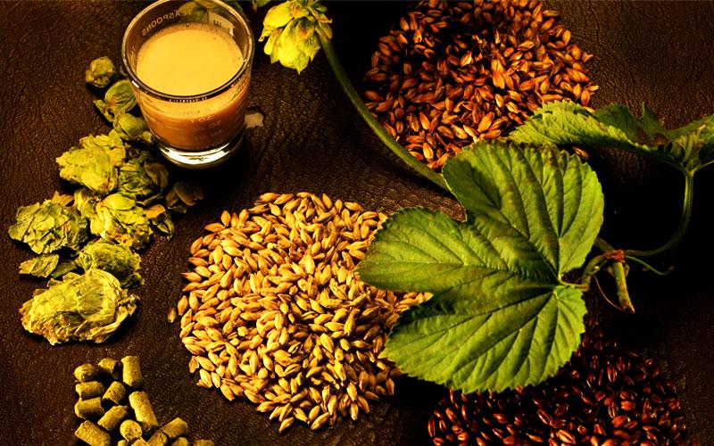 Insumos para Cerveja Artesanal Caseira