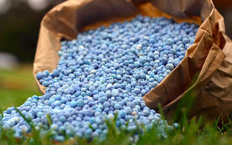 Fertilizante para Cultivo Indoor