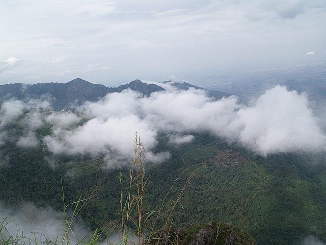 Ooty-Tamil Nadu-India