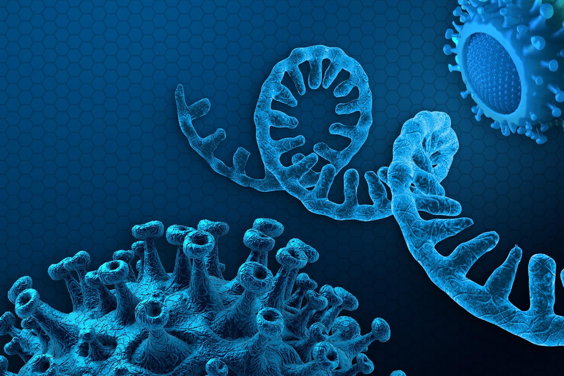 RNA, COVID-19, and Pregnancy