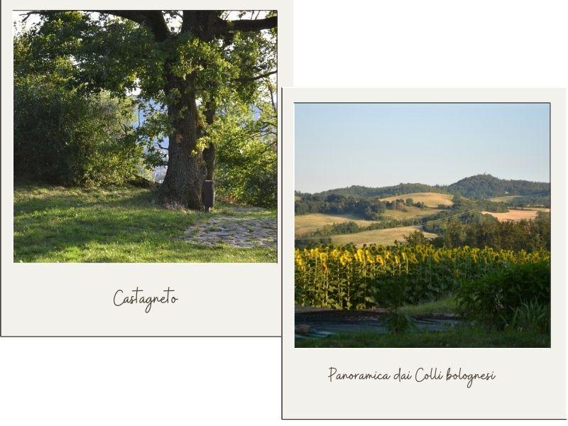 Cartoline dall'appennino bolognese