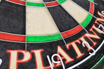 Royal Darts Dartboard