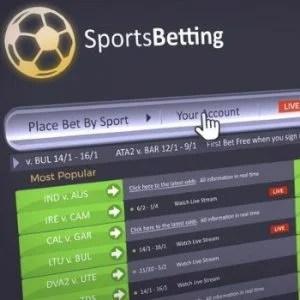 Gambling on the American Sports Betting Market