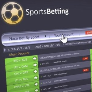 Gambling on the American Sports Betting Market