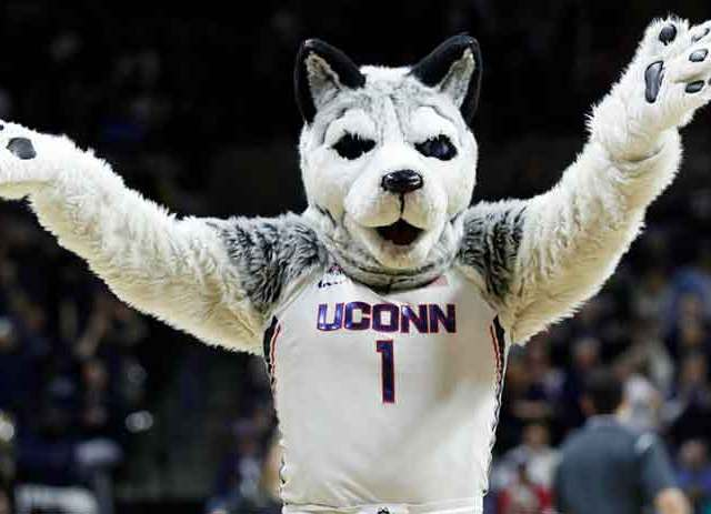 Sports Betting Update on UConn Moving to the Big EastSports Betting Update on UConn Moving to the Big East