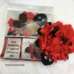 Rag Rug Ladybird Kit