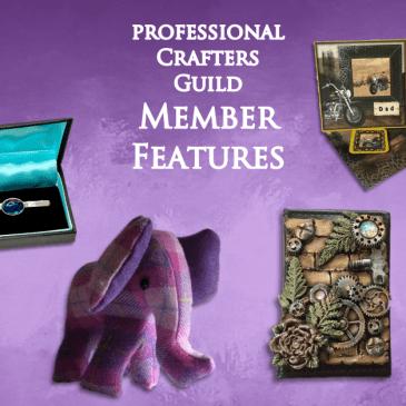 Sapphire Guild Member Features – June 2019 Part 3