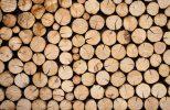 Tipos de madeira como explicar para os clientes