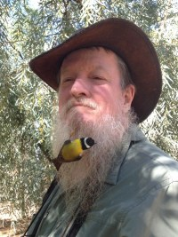 Man in an Akubra hat with a small yellow and black bird clinging to his beard