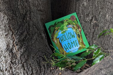 A Hollow is a Home book nestled in a tree hollow