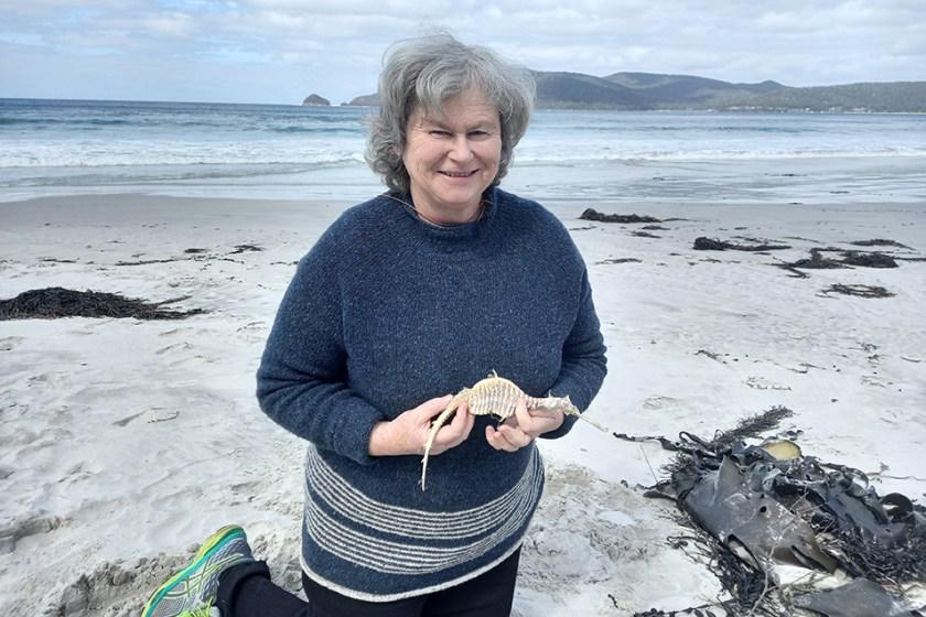 Author Anne Morgan kneeling on a Tasmanian beach holding the dried body of a weedy seadragon.