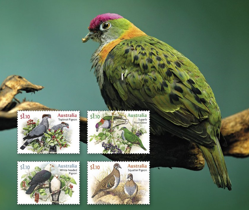Photo of a Superb Fruit Dove with 4 stamps in foreground