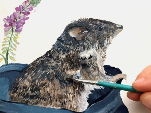 A close up photo of a person's hand holding a thin paintbrush over an illustration of a Gilbert's Potoroo emerging from a cloth bag.