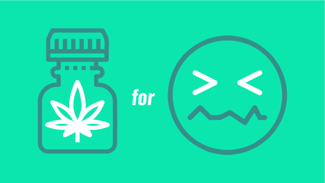 Want to Use CBD Oil for Anxiety? Here's What You Have to Know First
