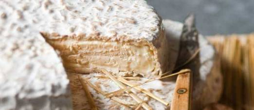 brie-melun-fromage-aoc-420033-jpg_282339
