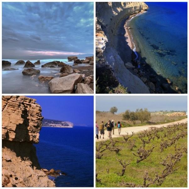 Cyprus Cove