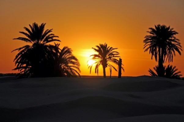 Tunisia-holidays-Purple-Travel
