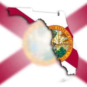 Florida Cannabis Consulting