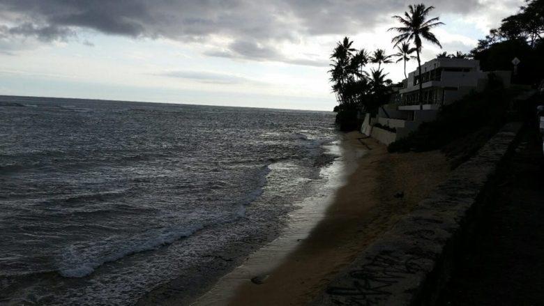 Hawaii Cannabis Consulting Trip 1 Photo_3