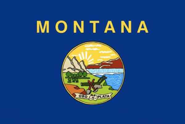Montana Cannabis Consulting