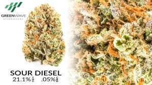 Sour Diesel marijuana strains