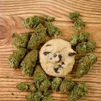 10 Recipes for Marijuana Edibles (That Aren't Brownies)