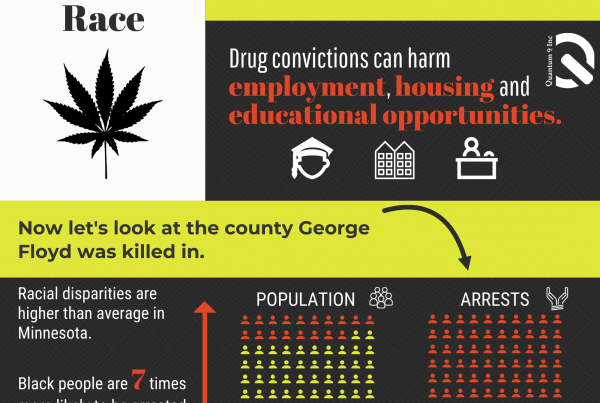 marijuana and race infograph
