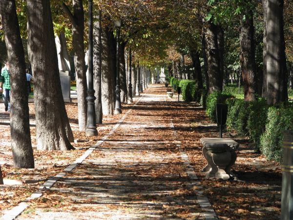 El Retiro en Madrid