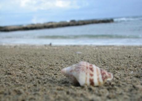 Playa, mar, arena