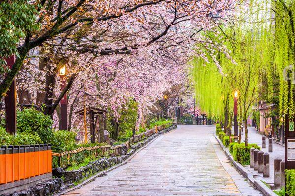 Parque en Kyoto