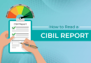 How to Read a Cibil Report?