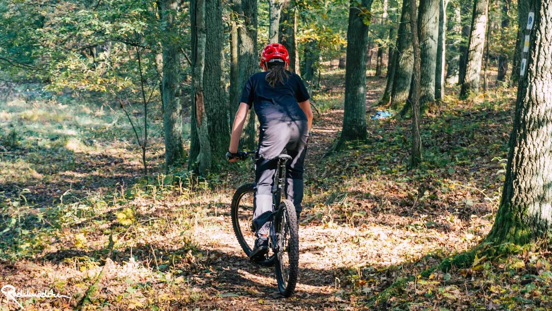 Mtb Biker im Wald