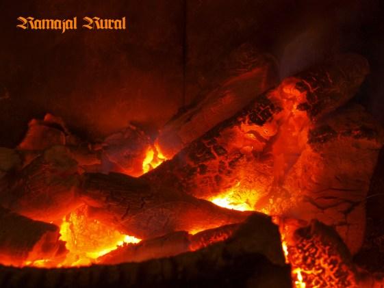 Reconfortante fuego para la noche