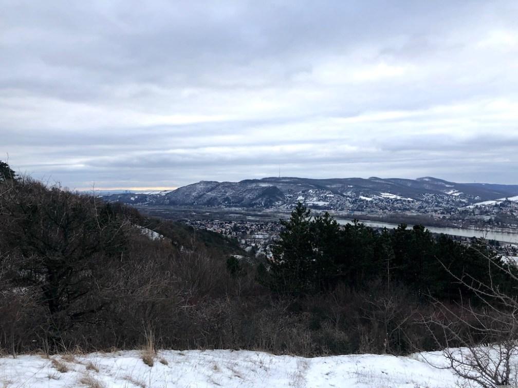 Geocachen am Bisamberg