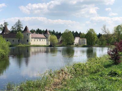Blick über den See auf das sonnenbeschienene Schloss