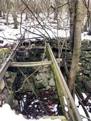 Ein Loch unter den Gleisen, aus dem ein Baum wächst