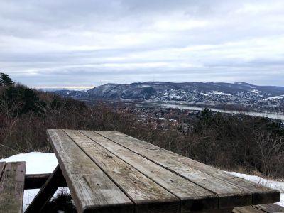 Tischbank mit Aussicht auf den Leopoldsberg