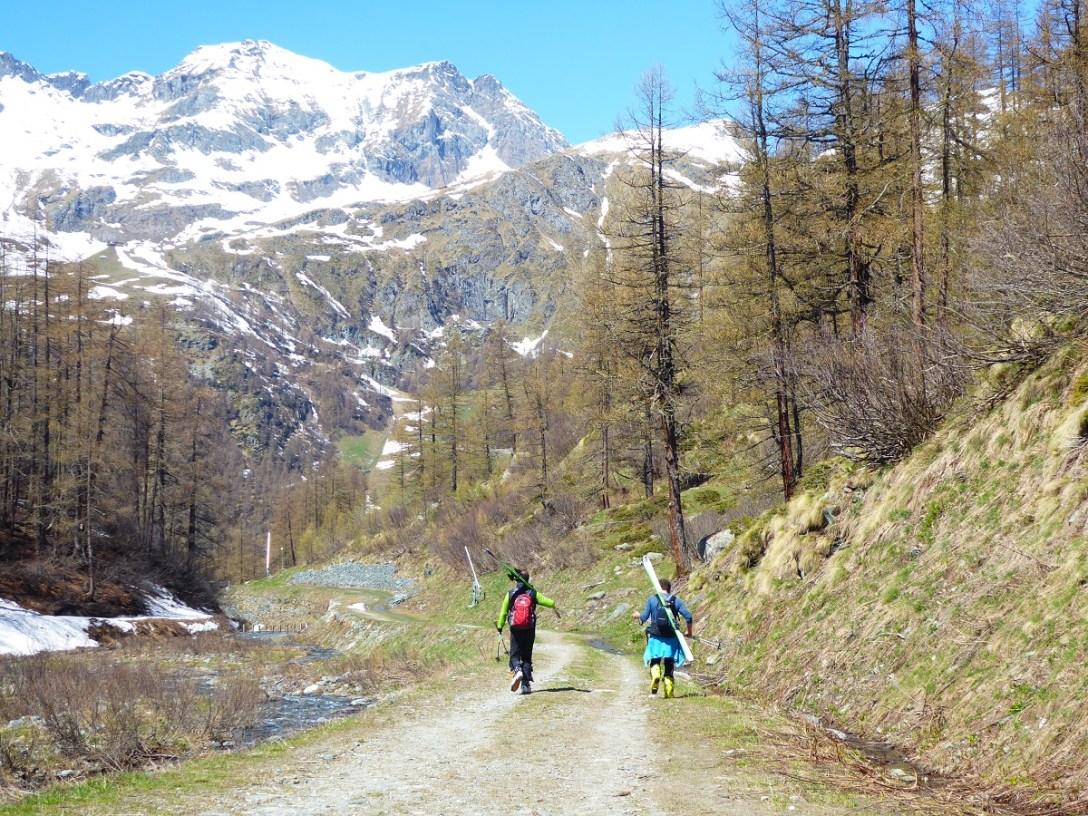 Summer_ski