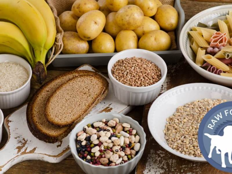 Carbs As Energy And Nutrition
