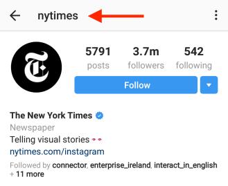 perfect instagram bio example nyt