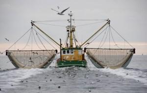 Krabbenkutter an der Nordseeküste