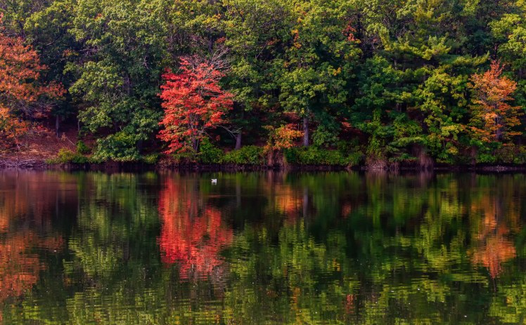 New England fall reflections