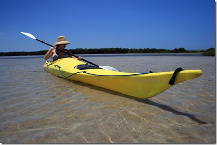 Sea Kayaking Tampa