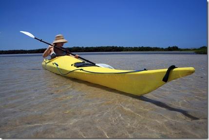 Sea Kayaking Tampa
