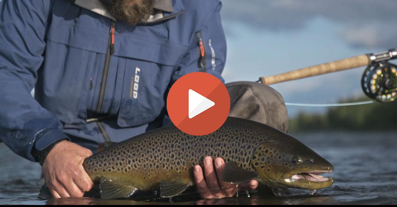 Les plus belles vidéos de pêche du mois de Juillet