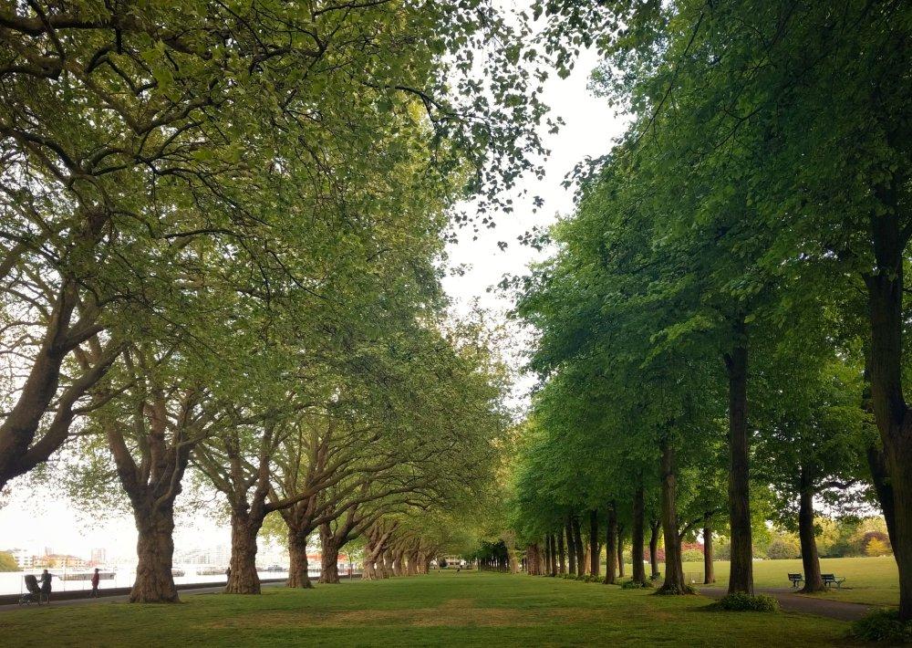 Wandsworth Park